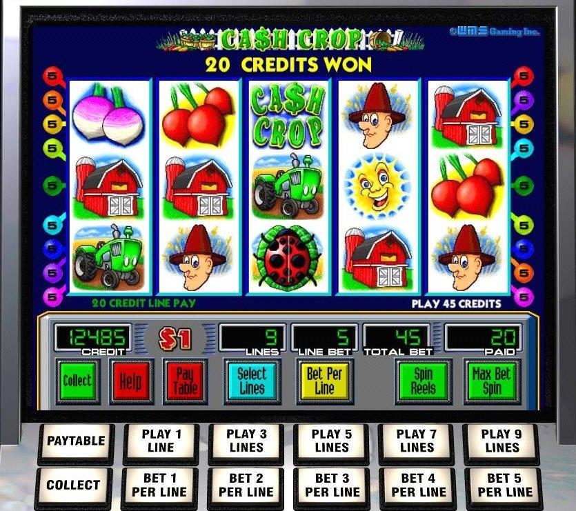 Cash Crop Casino Game